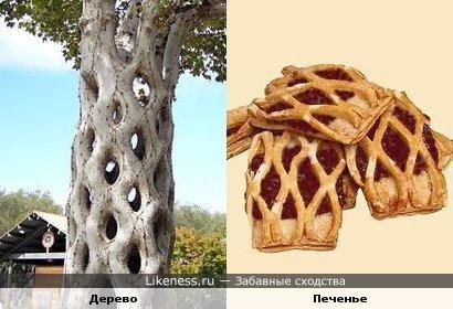Дерево и Печенье