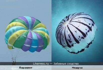 Парашют и Медуза