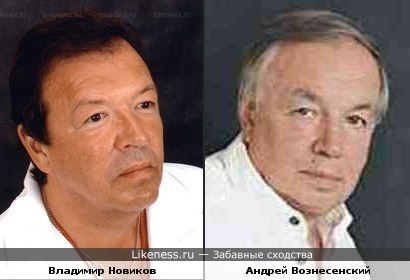 Владимир Новиков и Андрей Вознесенский
