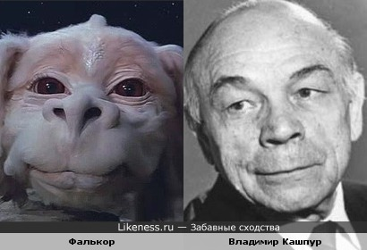 Фалькор и Владимир Кашпур
