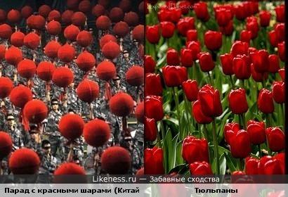 Парад с красными шарами (Китай) и Тюльпаны