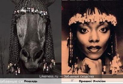 Лошадь и Прешес Уилсон