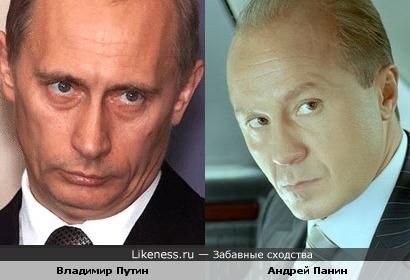 Владимир Путин похож на Андрея Панина