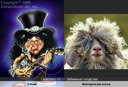 Гитарист группы Guns N' Roses похож на козу