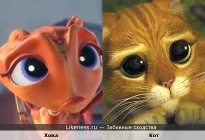 Фильм Гроза муравьев