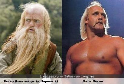Карлик из Нарнии напомнил уменьшенного Халка Хогана