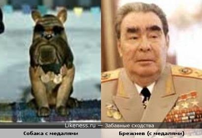"""Собака с медалями из """"Варежки"""" похожа на Брежнева"""