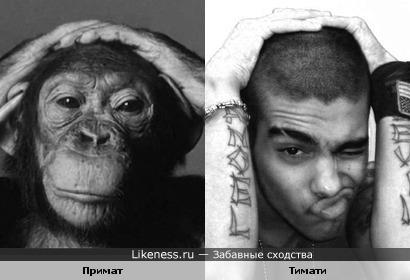 Примат и Тимати (Тимур Юнусов)