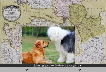 Карта Санкт-Петербургской губернии (1770 г.) и две собаки