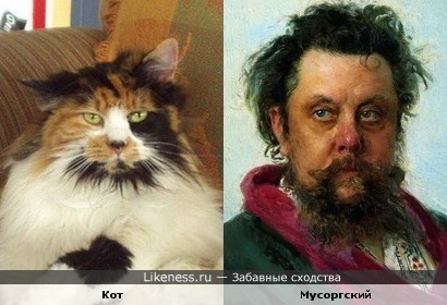 Кот напомнил Модеста Мусоргского