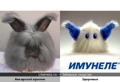 Ангарский кролик и персонаж Здоровье из рекламы Имунеле