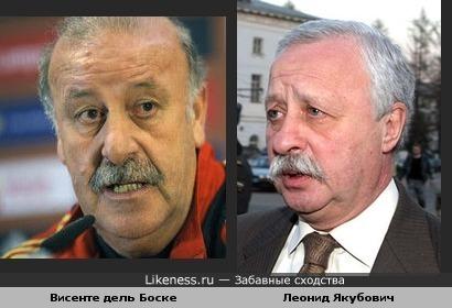 Тренер сборной Испании по футболу похож на Якубовича.