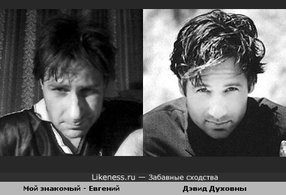 Мой знакомый - Евгений и Дэвид Духовны