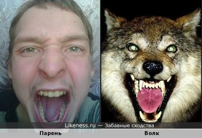 Парень похож на волка