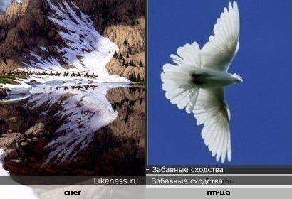 Снег на горе и его отражение похоже на парящую птицу...