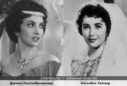 Джина Лоллобриджида и Элизабет Тейлор похожи