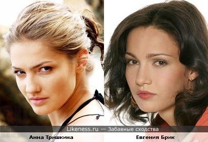Анна Тришкина похожа на Евгению Брик
