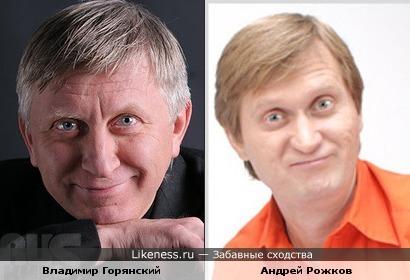 Владимир Горянский похож на Андрея Рожкова