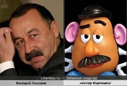 Валерий Газзаев похож на мистера Картошку