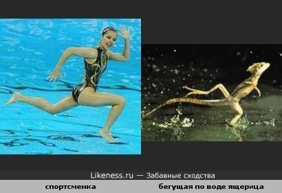 Спортсменка похожа на бегущую по воде ящерицу