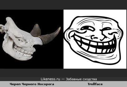 Череп Черного Носорога похож на Trollface