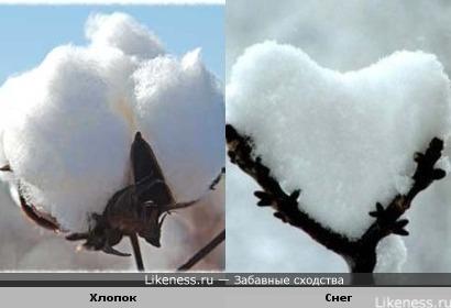 Хлопок = Снег