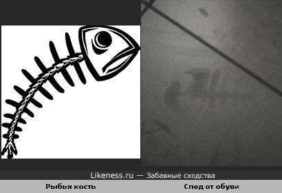 Рыбья кость и След от обуви