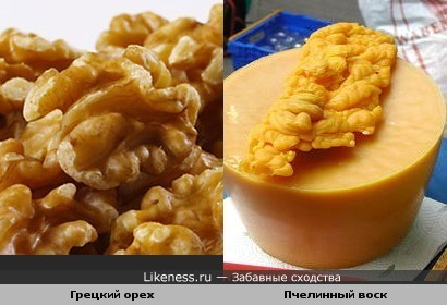 Грецкий орех и Пчелинный воск