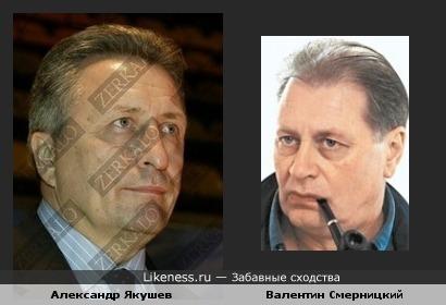 Александр Якушев похож на Валентина Смерницкого