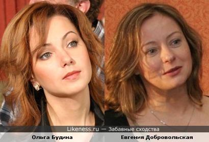 Ольга Будина похожа на Евгению Добровольскую