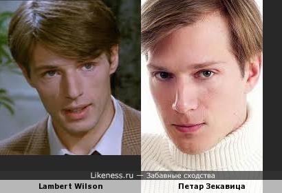 Петар Зекавица похож на Ламберта Уилсона