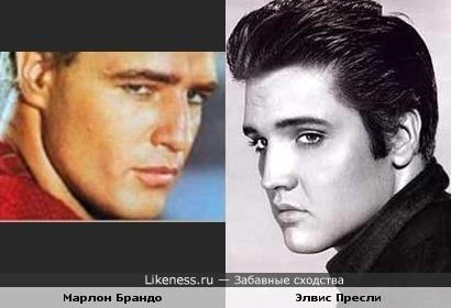 Элвис Пресли и Марлон Брандо немного похожи
