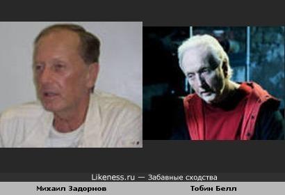 Михаил Задорнов похож на Пилу