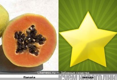 Папайа изнутри похожа на звезду