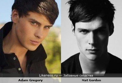 Адам Грегори похож на Мэта Гордона
