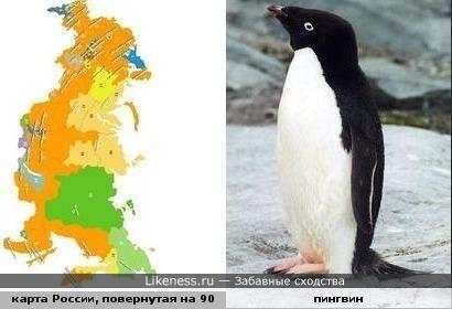 Карта России похожа на пингвина