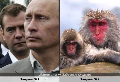 Следственный комитет РФ готовит еще одно уголовное дело на Коломойского и Авакова, - СМИ - Цензор.НЕТ 4162