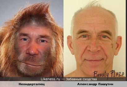 Теория Эволюции.