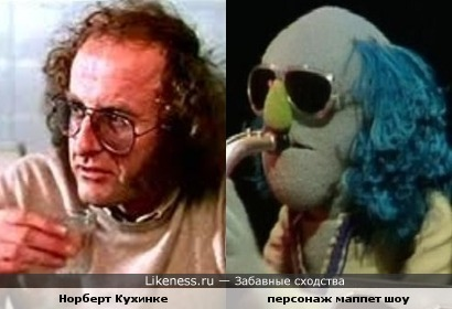 Норберт Кухинке похож на персонажа Маппет шоу