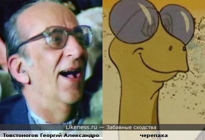 Товстоногов Георгий Александрович и черепаха.