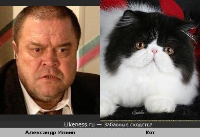 Александр Ильин - котяра еще та....