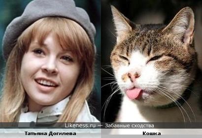 Кошка напомнила Татьяну Догилеву.