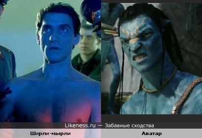 Голубое ухо, голубое брюхо, голубой чубчик. Как дела, голубчик?