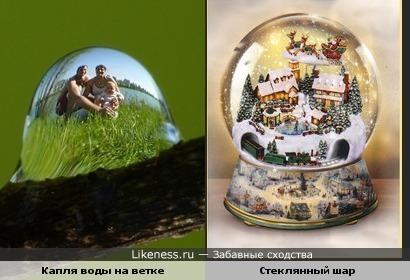Отражение в капле напомнили стеклянный шар.
