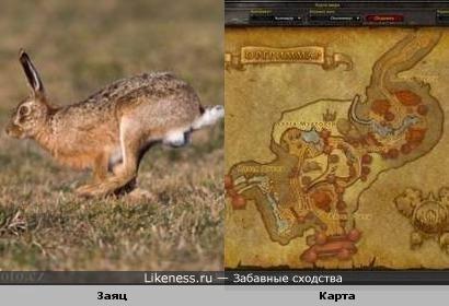 Очертания на карте из компьютерной игры напомнили зайца.