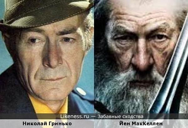 Николай Гринько похож на Йена Маккеллена