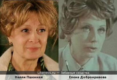 Нелли Пшенная похожа на Елену Добронравову
