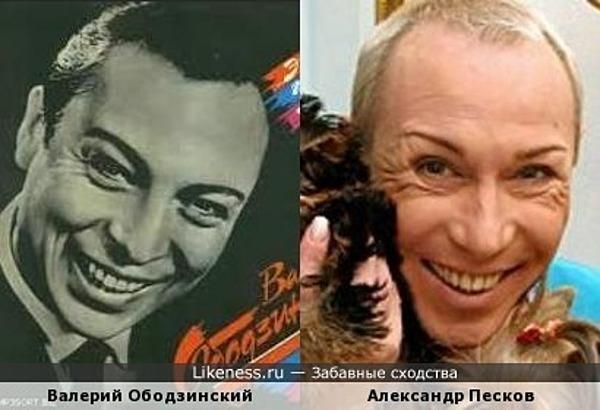 Александр Песков похож на Валерия Ободзинского