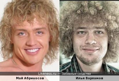 Май Абрикосов похож на Илью Варламова