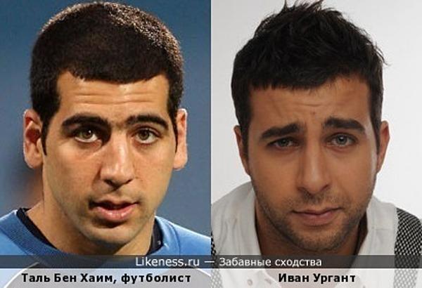 Таль Бен Хаим похож на Ивана Урганта